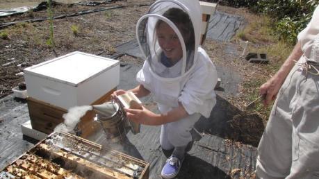 Devon smoking the hive